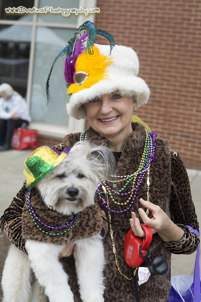 MardiGrowl Event, Dog Photography